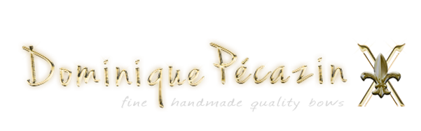 Dominique Pécazin logo