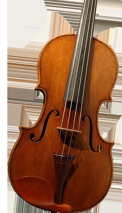小提琴新琴